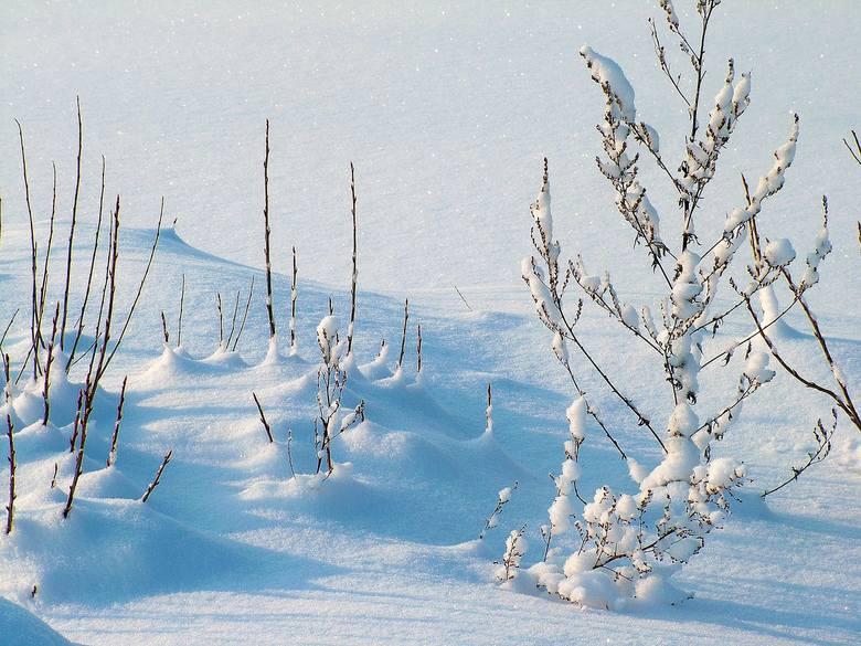 pogoda, śnieg