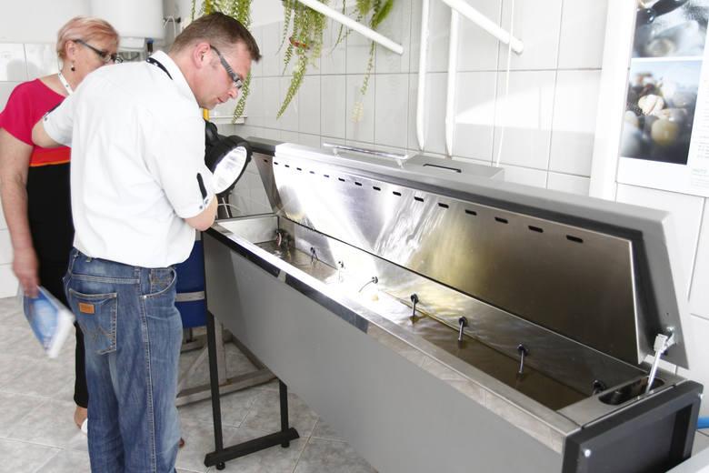 Rzeszowski MPWiK testuje system kontroli jakości wody wykorzystujący małże.