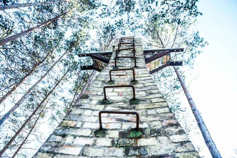 W Zielonym Lesie zawsze podczas spaceru można znaleźć tajemnicze ruiny. Kopalnie węgla były rozsiane po całej okolicy