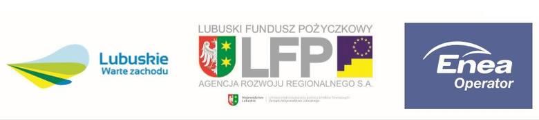 Partnerzy Plebiscytu
