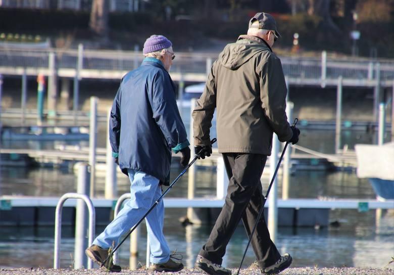 Okresy zatrudnienia a wysokość emerytury.