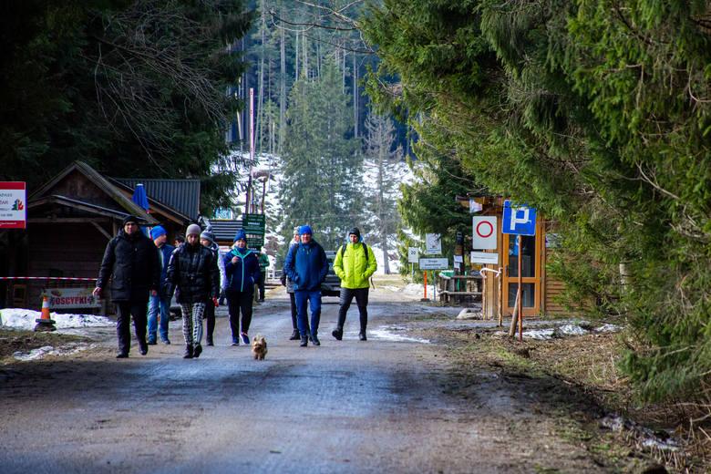Koronawirus - Zakopane. Mimo zakazu wielu turystów wchodzi na tatrzańskie szlaki