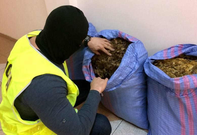 Suwałki. Policja wspólnie z KAS ujawniła 60 kilogramów nielegalnego suszu tytoniowego [ZDJĘCIA]