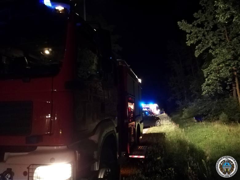 Wypadek na DW 645. Opel zderzył się z łosiem (zdjęcia)