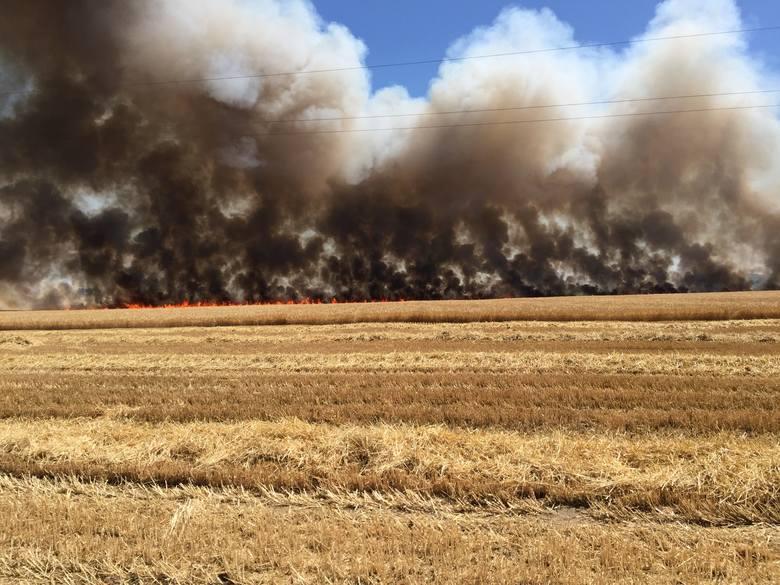 Pożar wybuchł w niedzielę po godzinie 13. - Na miejscu jest już OSP z Dąbrówki. Kolejne zastępy strażackie jadą. Łącznie zadysponowano jedenaście – dodaje