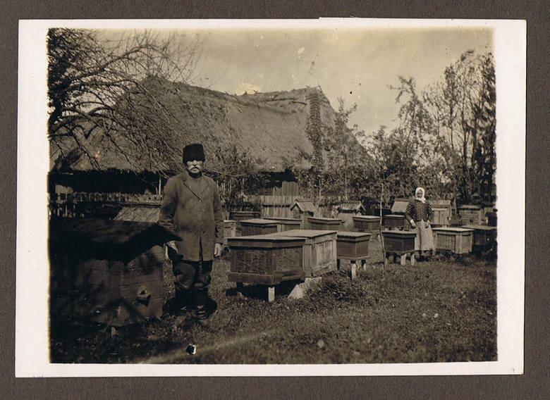 Pasieka na Lubelszczyźnie, lata 30. XX wieku.