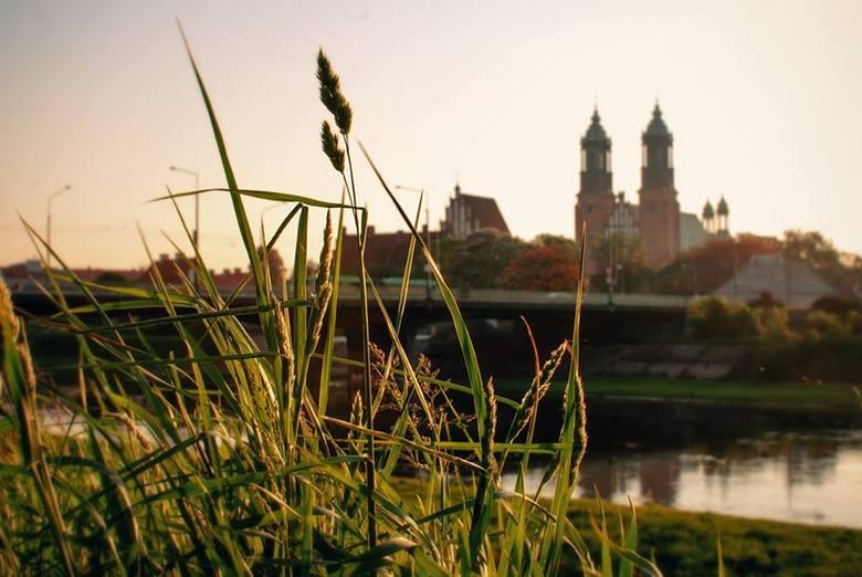 Amerykanin fotografuje Poznań. Tym razem wiosnę w mieście