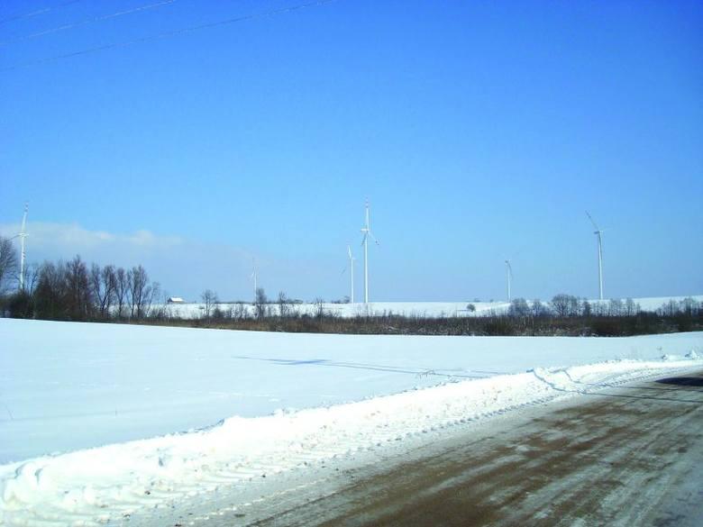 To farma wiatrowa pod Gołdapią. Gigantyczne wiatraki stoją tam już kilka lat. Nie produkują jednak energii elektrycznej, choć prywatny inwestor już nie