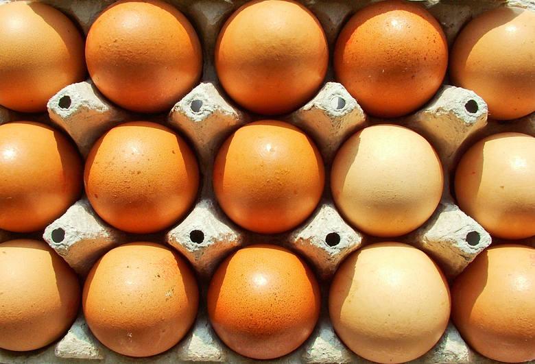 Czesi kwestionują jakość jaj z Polski. Ministerstwo będzie wyjaśniać