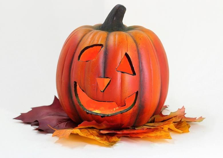 Dynia Na Halloween Jak Zrobić Dynię Na Halloween Wzory I