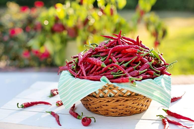 Papryczka chili doda ostrości każdemu daniu. Zobaczcie przepisy na pyszne potrawy z ostrą papryką.