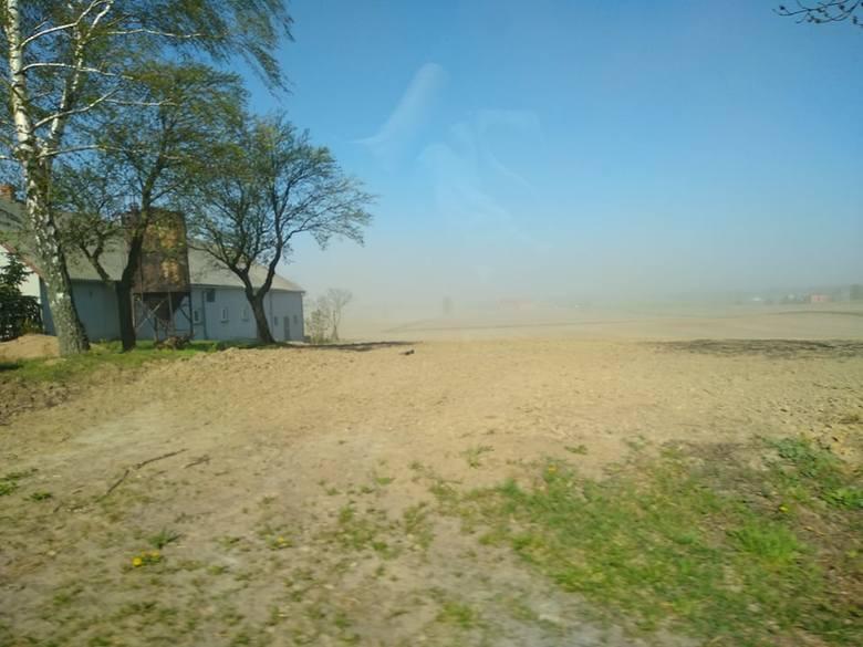 Burze piaskowe, susza - to nie Sahara, a polskie pole. Apel o ogłoszenie stanu klęski żywiołowej