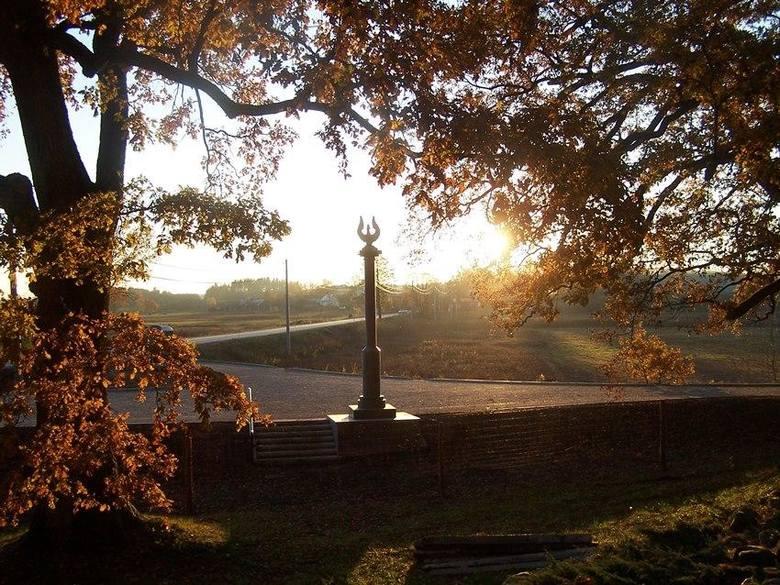 Arboretum w Kopnej GórzeMiędzy Supraślem a Krynkami znajduje się kolonia Kopna Góra, w niej - urokliwe arboretum czyli Ogród Dendrologiczny im. Powstańców