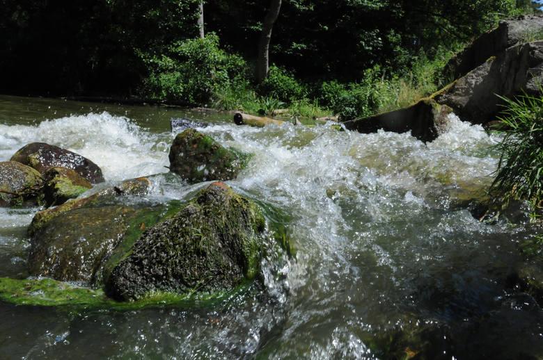 Jeziora Pliszki i Ilanki Perełki nanizane na krystaliczne rzeki