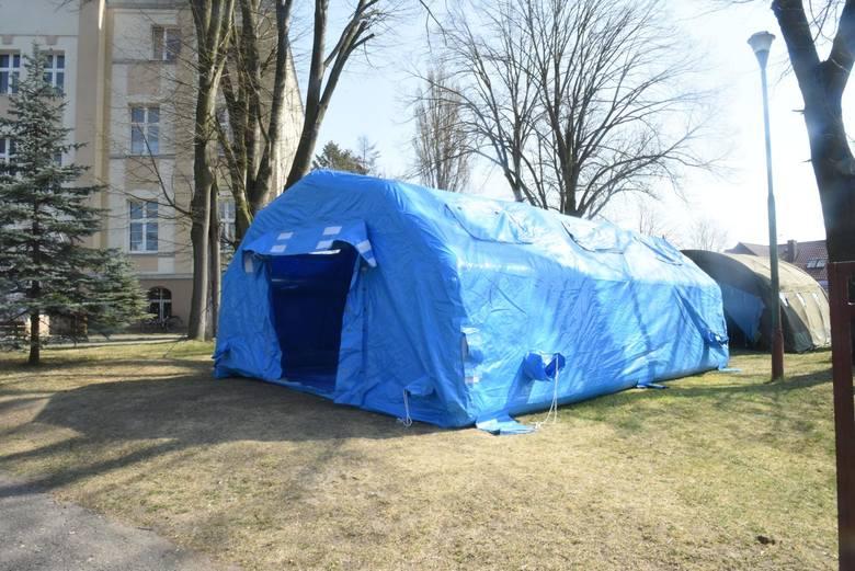 Koronawirus na Podkarpaciu. 14 ofiar, 471 kolejnych pacjentów w kraju. U nas bez nowych przypadków [RAPORT 20 V]