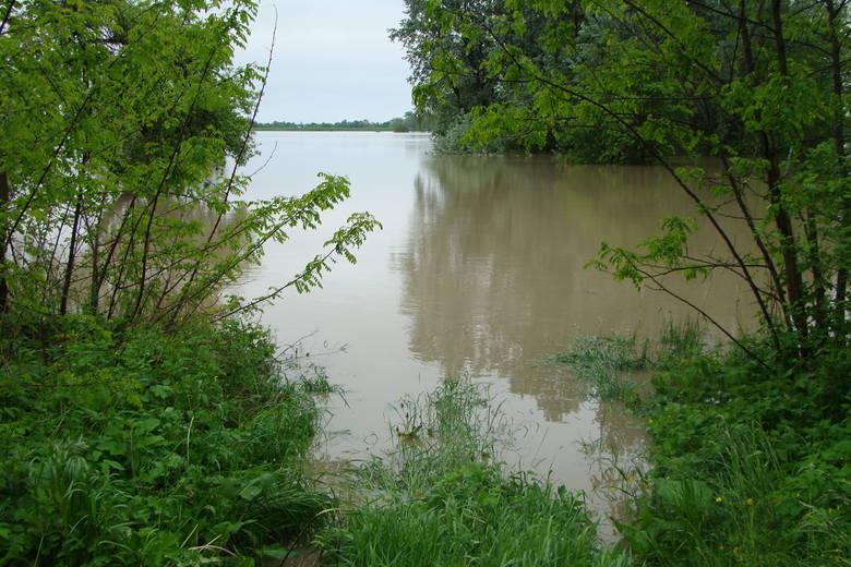 10 lat temu gmina Koszyce walczyła z wielką powodzią [ZDJĘCIA]