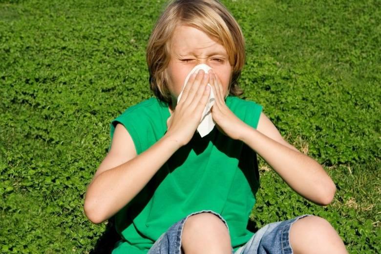 Ozonowanie pomieszczeń jest szczególnie polecane w domach alergików.