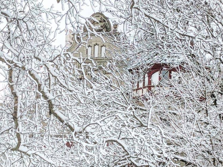 Sypnęło śniegiem...
