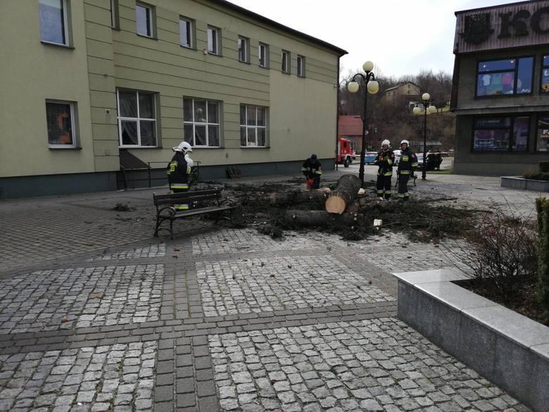 Dwa drzewa rosnące na rynku w Gilowicach zostały wycięte