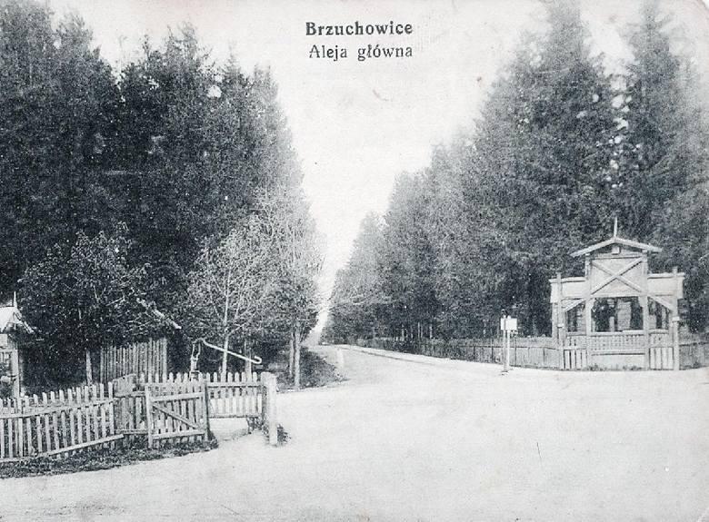 W II Rzeczypospolitej Brzuchowice były popularną wsią letniskową. Zjeżdżali tutaj goście nie tylko z pobliskiego Lwowa.