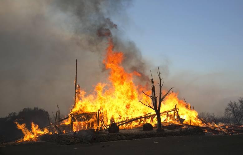 Tragiczne pożary w Kalifornii. Stan klęski żywiołowej w hrabstwach Napa i Sonoma