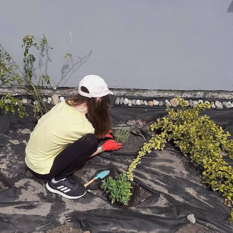 Ogród marzeń powstaje przy Młodzieżowym Centrum Leczenia Nerwic w Zawadzie. Do zagospodarowania jest 50 arów, więc młodzi pacjenci chętnie przyjmą kolejne rośliny, m.in. kwiaty, drzewka i krzewy. Opieka nad nimi sprzyja terapii i pokonaniu demonów, z którymi się mierzą.