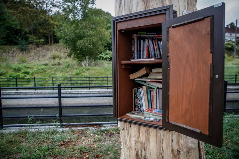 Biblioteka powstała w starym uschniętym kasztanowcu.