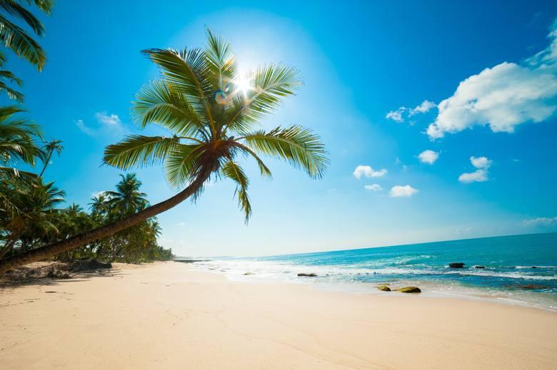 Turyści planujący wykupić ubezpieczenie to przede wszystkim osoby pomiędzy 30 a 49 rokiem życia.