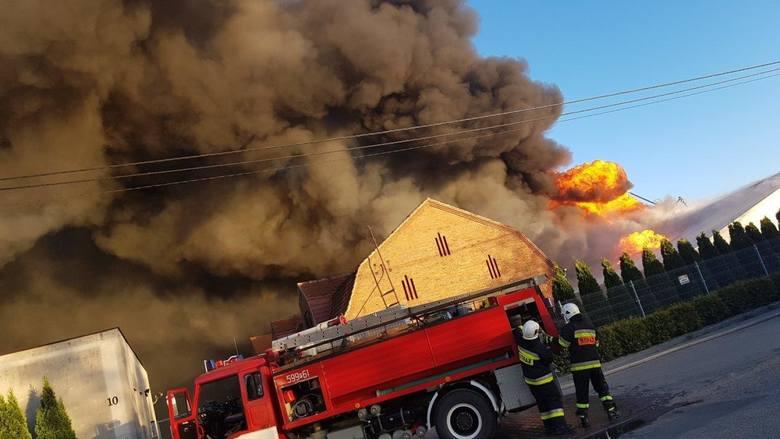 Wielkopolska: Pożar chlewni w Wychowańcu. Zginęło kilka tysięcy świń