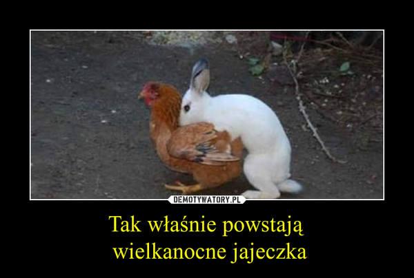 https://d-pt.ppstatic.pl/k/r/1/ce/88/56efe8bb9d7bd_p.jpg?1459253033