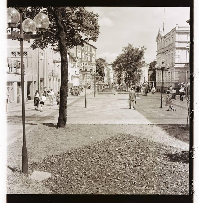Aleja Niepodległości w Zielonej Górze nie zawsze miała tyle drzew. Pokazujemy ten popularny na spacery fragment deptaka na zdjęciach Czesława Łuniewicza