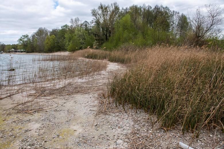 Już styczeń 2020 roku pokazał, że susza przestaje być też domeną najcieplejszych miesięcy. Na terenie Wielkopolski już na początku roku odnotowano susze rolniczą i atmosferyczną. <br />