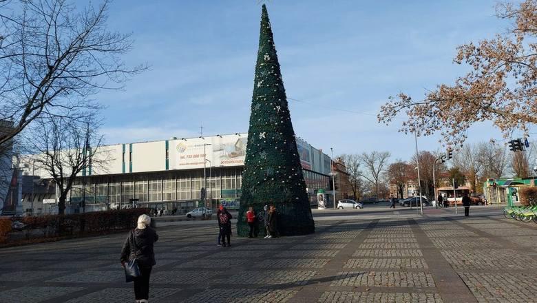 W centrum miasta zaczynają się już pojawiać pierwsze ozdoby świąteczne. Rozbłysła już wielka choinka, która tradycyjnie już stanęła przy Placu Bohaterów.