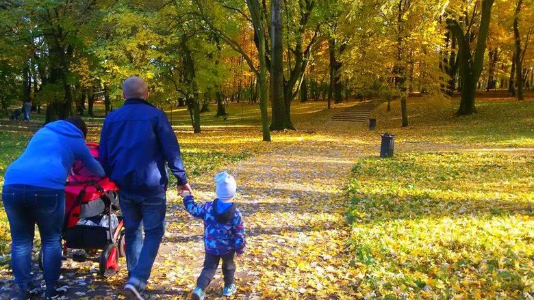 Gdzie najlepiej spędzić piękną jesienną niedzielę? Na spacerze. Bytomianie doskonale wiedzą, że zabytkowy Park Miejski im. Kachla może dostarczyć wielu
