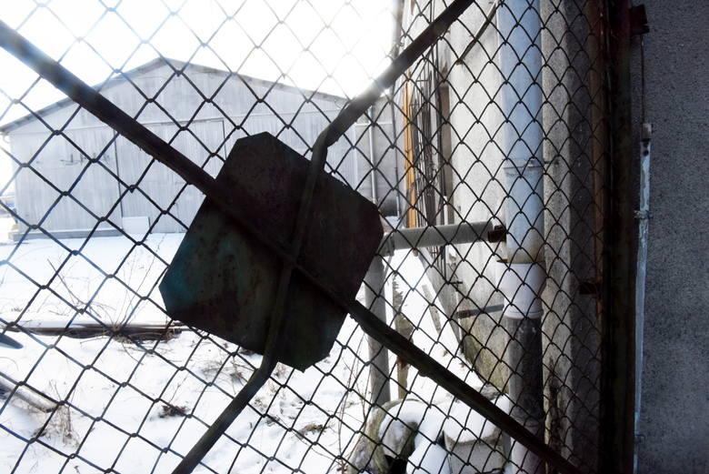 W hali w Przylepie nadal zalegają toksyczne odpady. Czy można coś z tym zrobić?