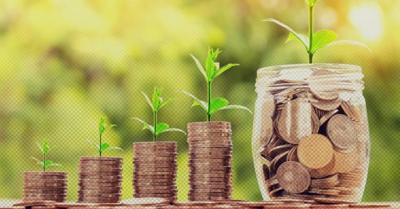 10 faktów o PPK. Kto i ile dołoży do naszych emerytur? WSZYSTKO, co musisz wiedzieć o oszczędnościach PPK
