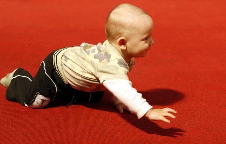 W pierwszym półroczu 2019 roku w Urzędzie Stanu Cywilnego w Grudziądzu zarejestrowano 551 aktów urodzeń. [Przewagę stanowili chłopcy - o 25 więcej niż