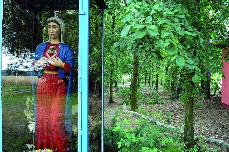 Za figurą Matki Boskiej stojącej przy głównej kaplicy jest ścieżka, na której 25 lat temu Jezus Chrystus ukazał się siostrze Czesławie Polak
