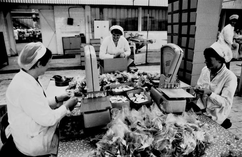 """Ważenie i pakowanie słodkich wyrobów produkcji nowej """"Pomorzanki"""" w 1983 roku"""