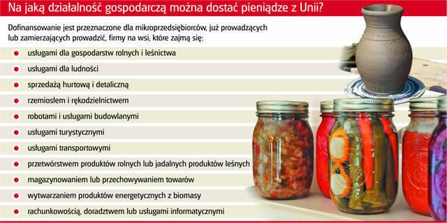obraz_info_wies_dofinans_mikroprzed_i.jpg