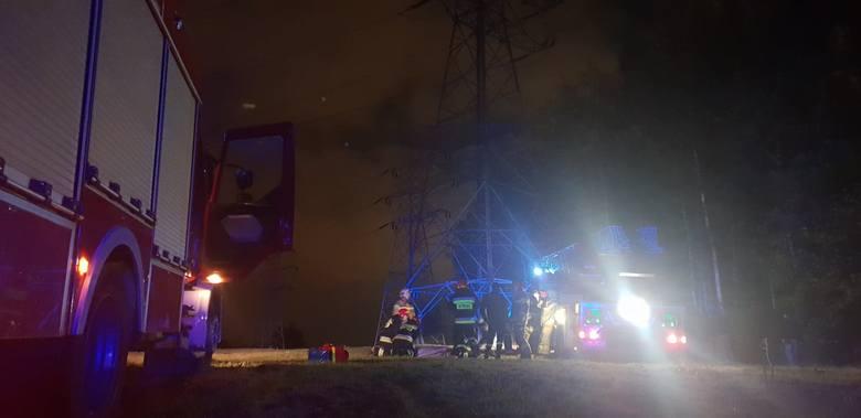 Do szpitala przewieziony został mężczyzna, który w czwartek wieczorem (10 października) wszedł na słup linii energetycznej koło elektrowni na Widzewie.CZYTAJ
