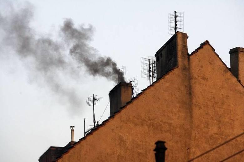 Radny: Ekoterroryści atakują w Głogowie!