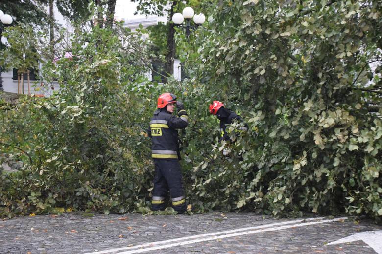 Interwencje strażaków na południu Opolszczyzny po burzach