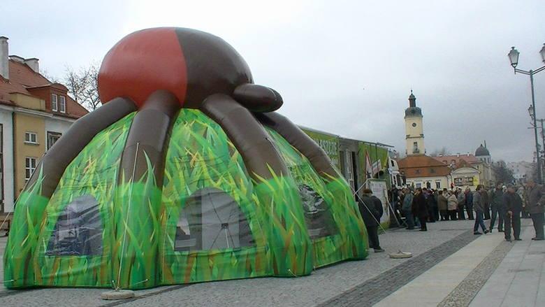 Gigantyczne kolejki na Rynku Kościuszki! (wideo, zdjęcia)