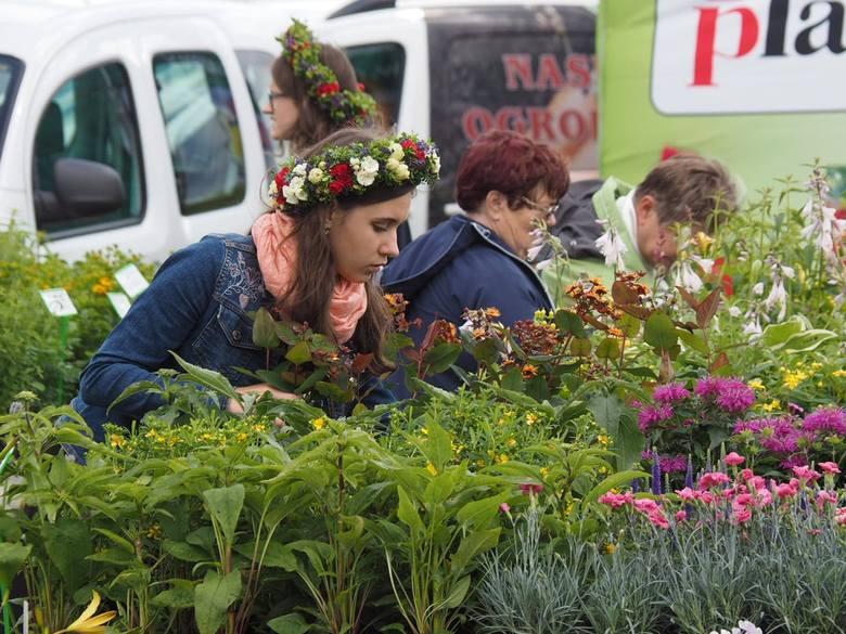 """W tym roku impreza została zorganizowana pod hasłem """"Kwiatowy smak orientu""""."""