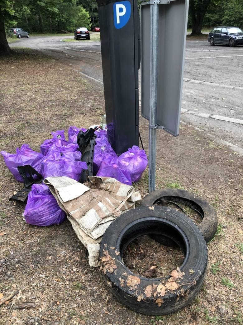 Tyle śmieci Tomasz Rybak zebrał wokół parkingu nad jeziorem Nierzym