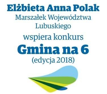 Elżbieta Anna Polak Marszałek Województwa Lubuskiego wspiera Plebiscyt Gmina na 6