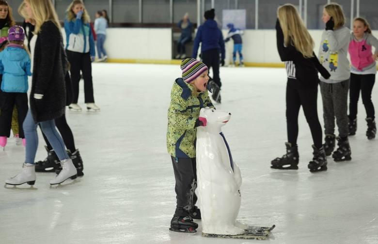 W czasie ferii zimowych na uczniów poznańskich szkół czeka wiele atrakcji. Mogą wziąć udział w warsztatach lub pojeździć na łyżwach