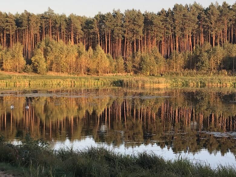 Zalew w Czerwieńsku jesienną porą.
