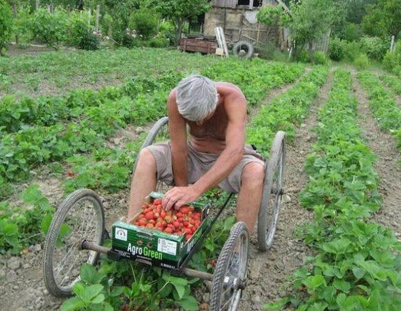W naszym regionie rolników nie brakuje, wielu sobie doskonale radzi i karmi, jak by nie patrzeć, miastowych. Wiele gospodarstw prężnie się rozwija, ale
